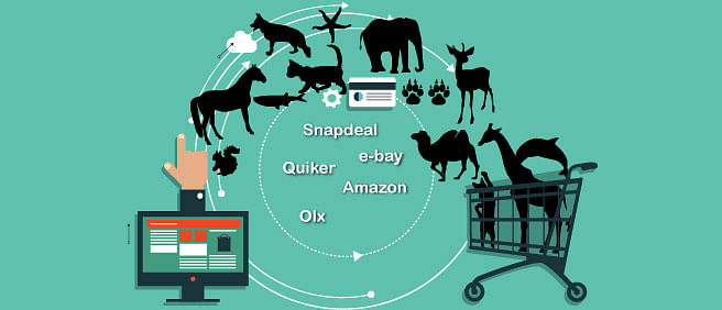 Amazon and Snapdeal among 106 portals advertising animal parts