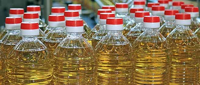 India's edible oil import doubles as demand rises