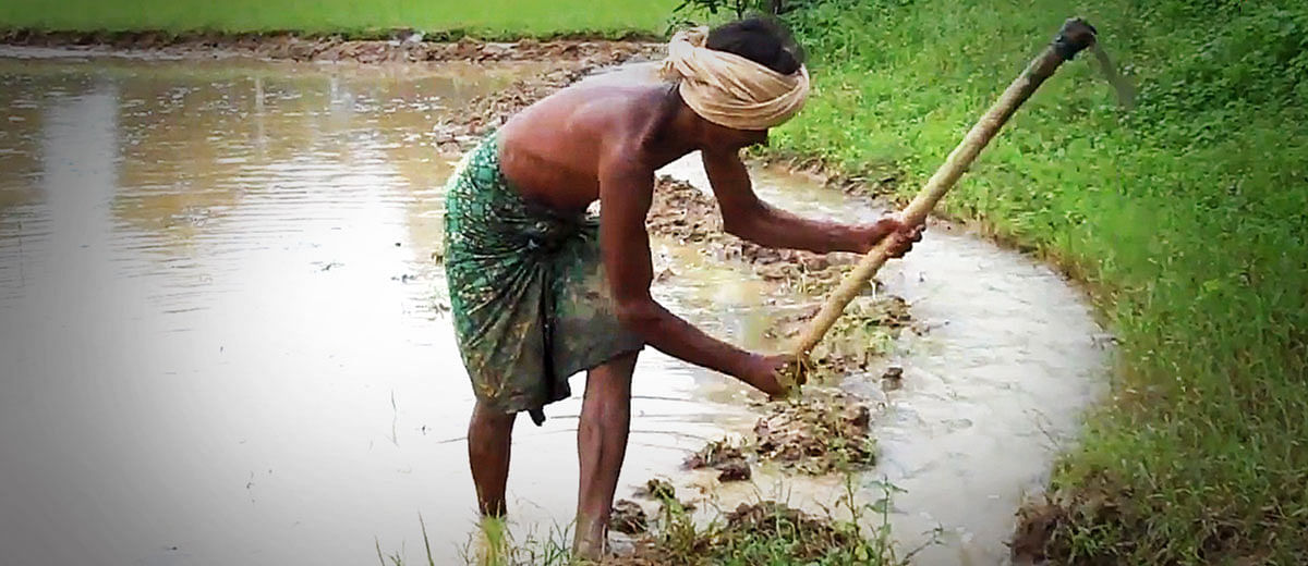 Lower Suktel Irrigation Project: Whose development is it?