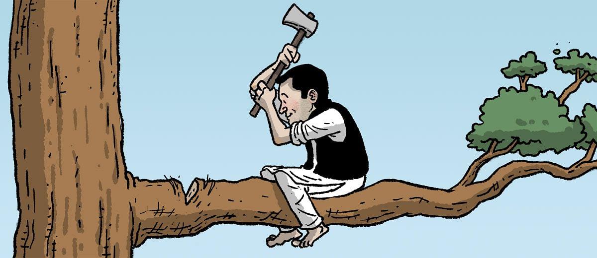 India is not Rahul Gandhi's upset wife