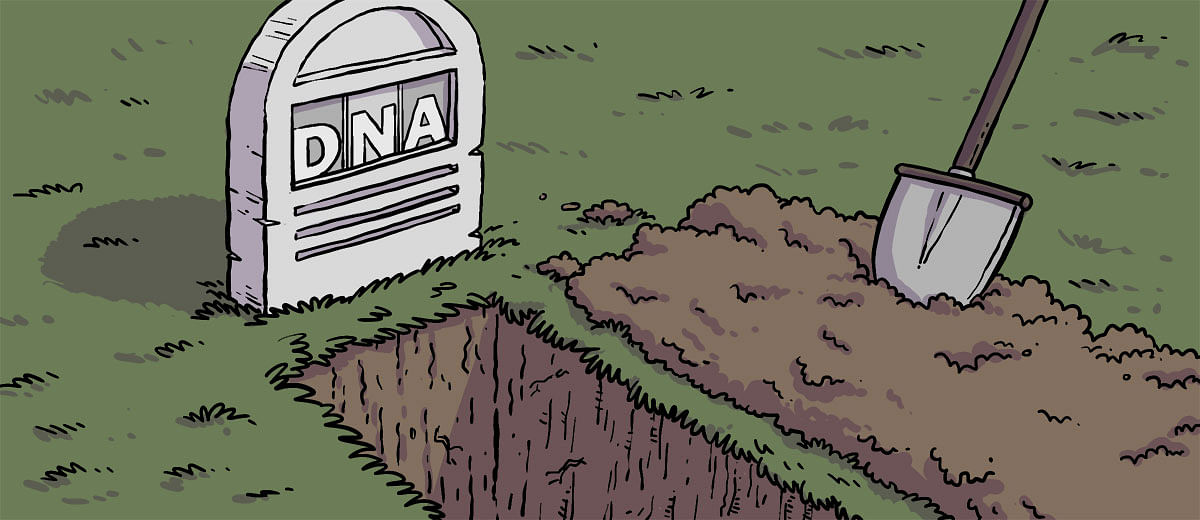 How DNA newspaper is dying a slow and painful death
