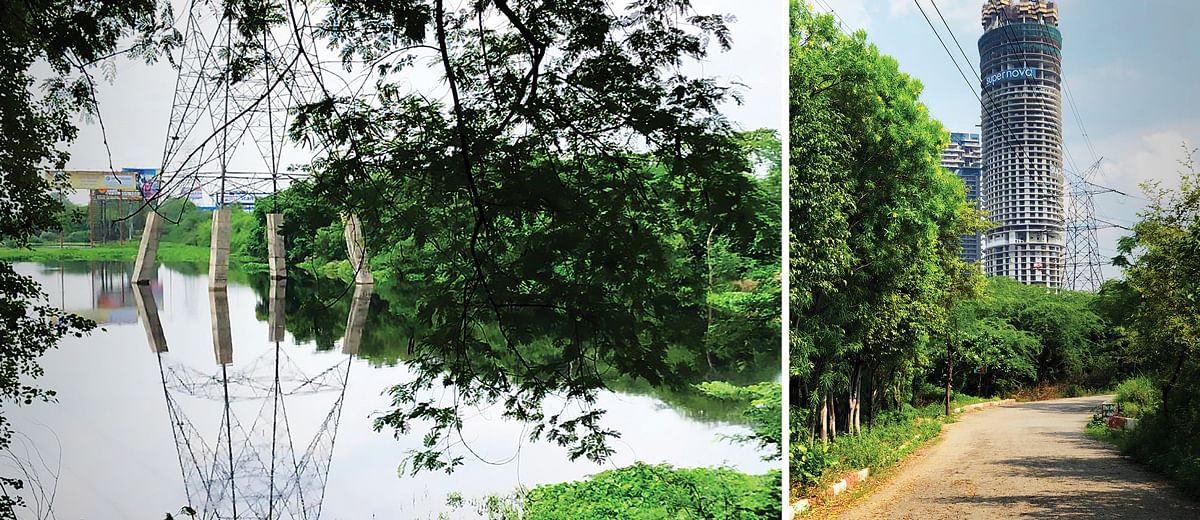 Okhla Bird Sanctuary: Birds of a feather don't flock here anymore