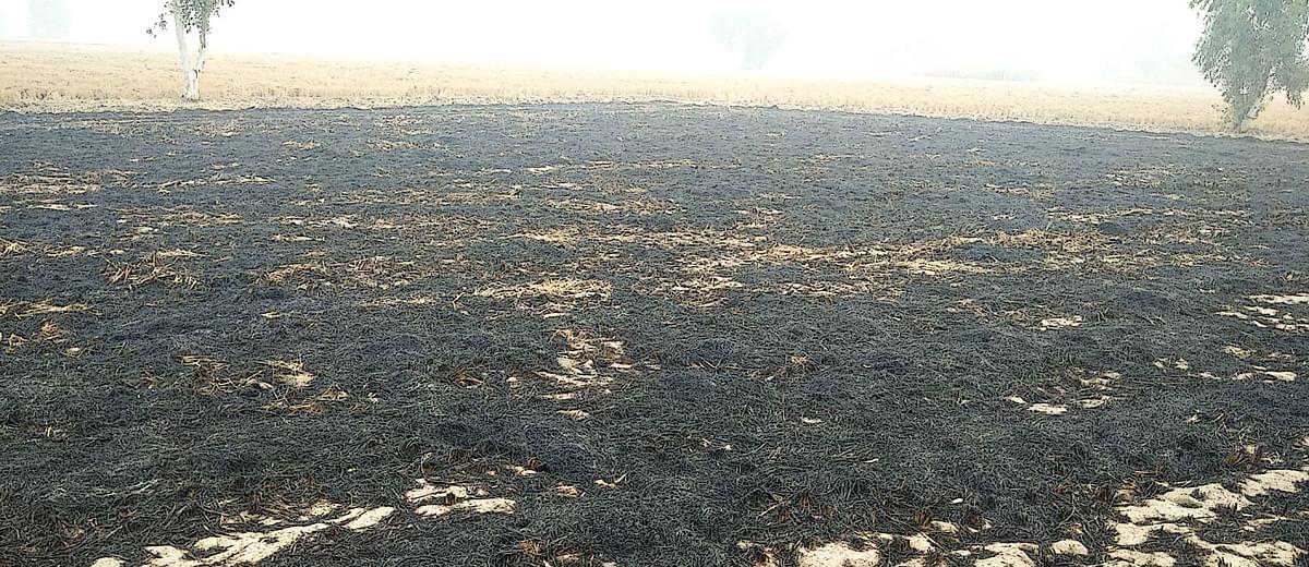 उदास रंगीनियां: पंजाब- ए जर्नीज़ थ्रू फाल्ट लाइन्स