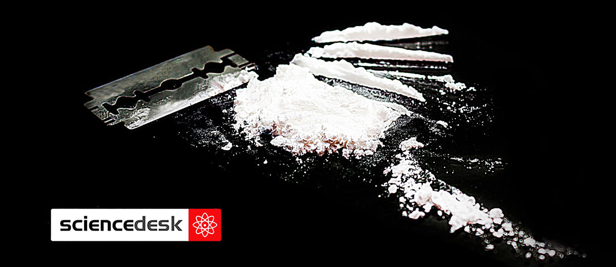Cocaine addiction and the promise of magnetic medicine