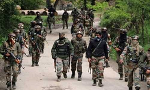 Security forces launch search operation in Shopian