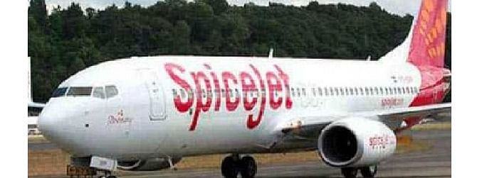 SpiceJet carries 170 ton of lychee & fish seeds from Kolkata in May