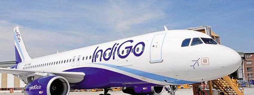 IndiGo uplifts 20,212 kgs of CarGo