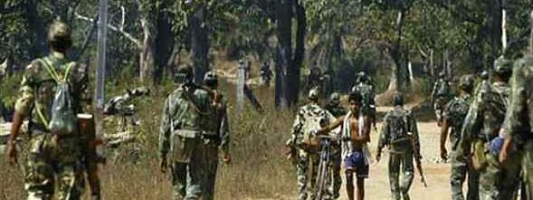 Five Maoists killed in encounter with security forces in Latehar