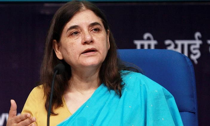 Killing of Tiger Avni, a crime, will ask Mah CM to take strong action in matter: Maneka
