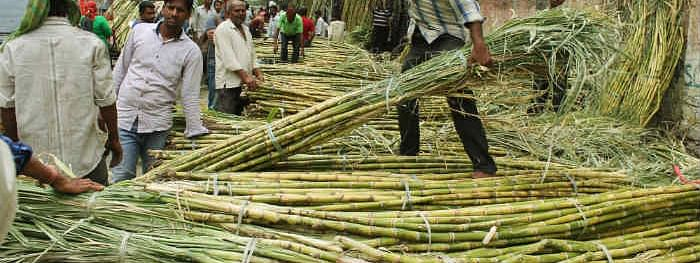 Govt clears Rs 5,500 cr package for sugar sector