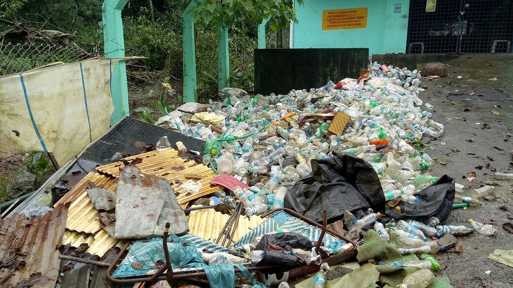 Sabarimala pilgrims are forced to take dip in polluted Pamba