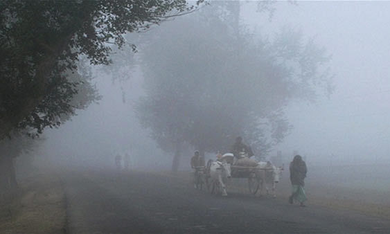 Uttarakhand in grip of cold wave