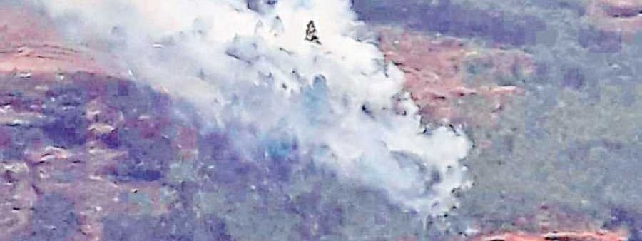 Wildfire breaks out at Anamudi Shola Park; efforts underway to distinguish fire
