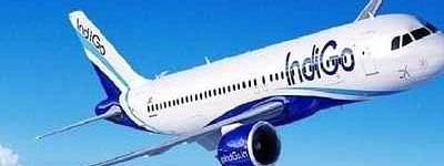 IndiGo launches 3 new international, 20 additional domestic flights
