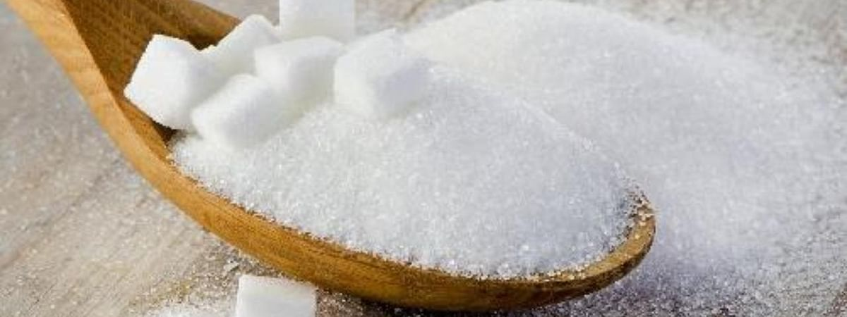 Sugar rates steady in Kolhapur market today