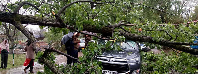CPM seeks relief for storm-hit Himachal farmers