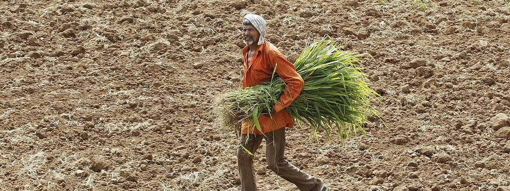 Centre asks Tripura to set priority on farmers issue