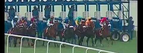 'War Hammer' wins Colts Championship Stakes