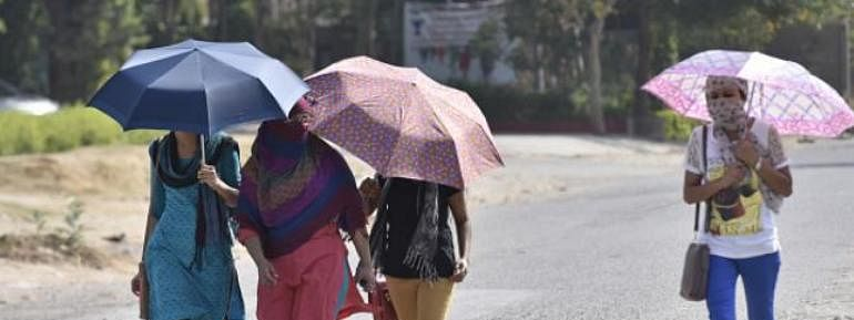 Heat wave : Haryana advises people to stay safe
