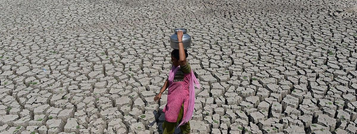 Monsoon delay leads to drought-like conditions in HP