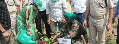 Army officers organise tree plantation drive in Delhi