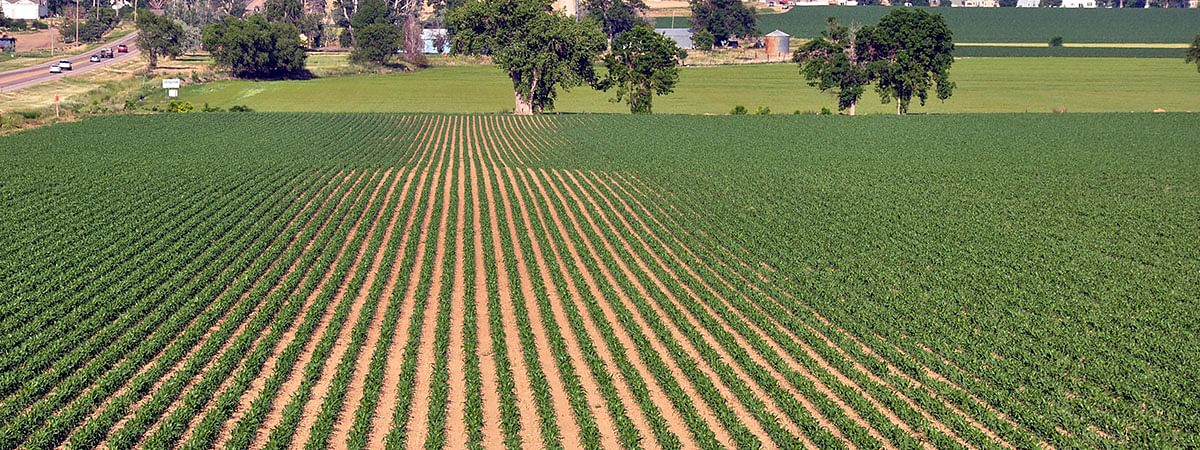 Agriculture Today: The voice of farmers