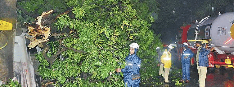 Tree uprooted due to strong winds; Traffic disrupted on heavy rain