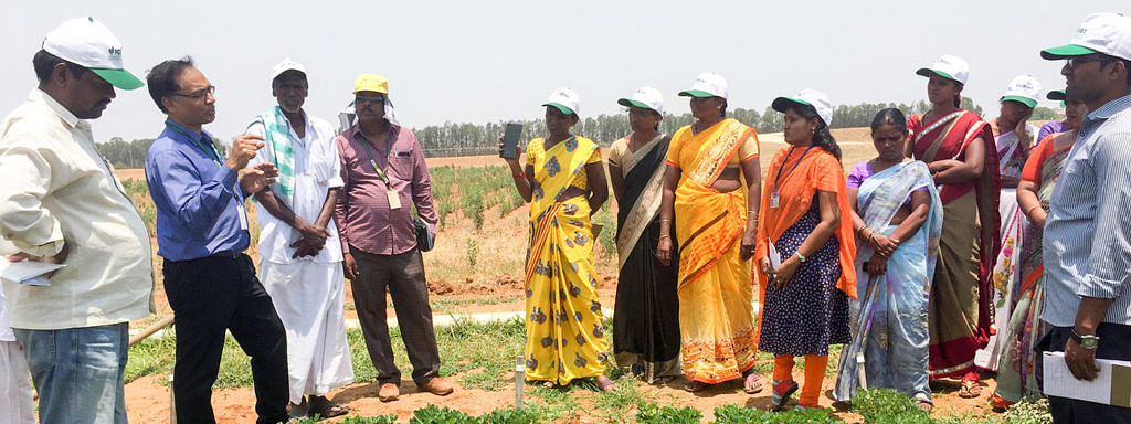 ICRISAT , PJTSAU jointly initiate 'Seed Business Venture' model