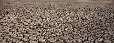 Marathwada drought drives two farmers to suicide