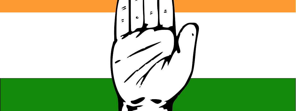 Strict laws not needed to fight terrorism: Congress