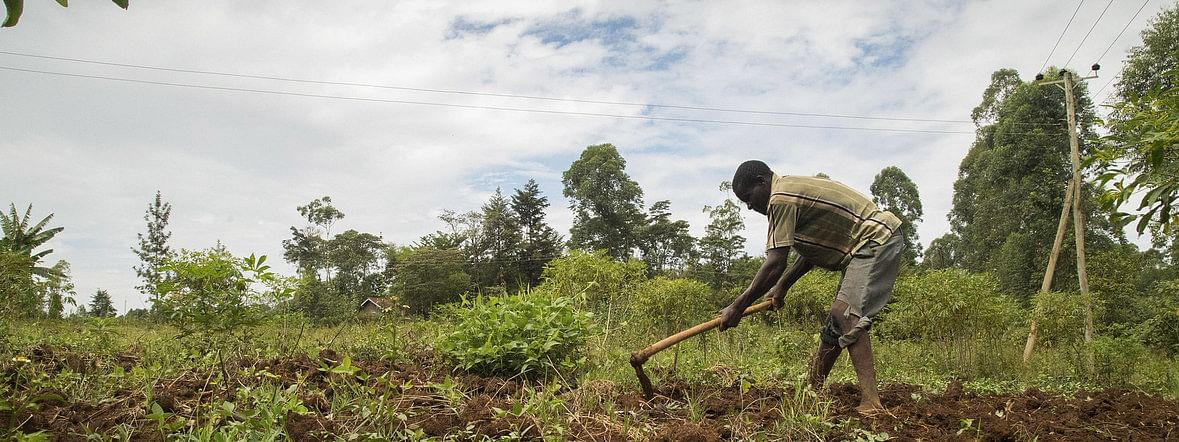 Help African farmers cope with climate change threats