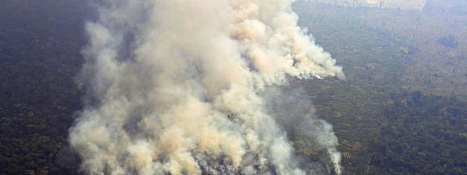 Amazon fires: Brazil to send Army to douse fire