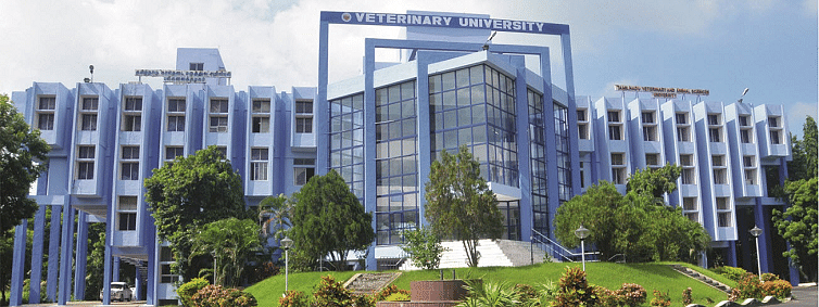 TANUVAS, Sydney Univ to set up research institute in TN
