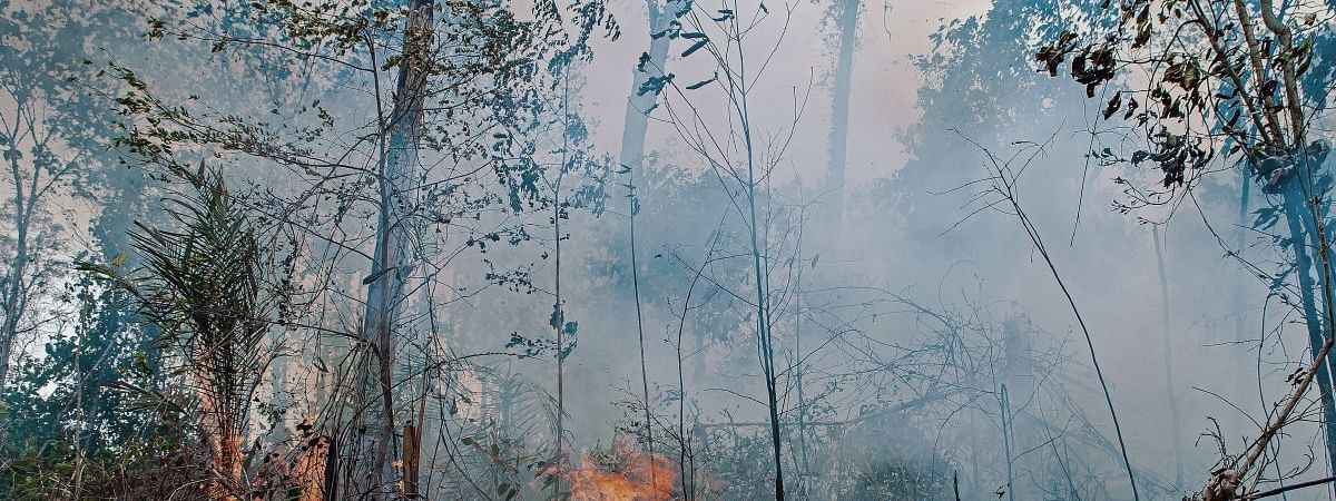 Heat is great like 'gates of hell', journalist covering Amazon forest fire