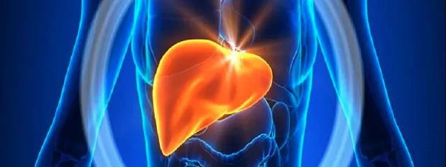 Fatty Liver a challenge for Liver Transplant - liver transplant unit at CMRI