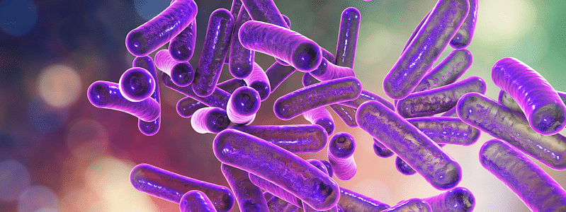Shigella suspected to be cause of girl's death in Kozhikode