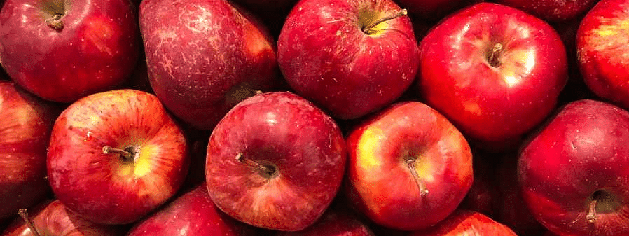 Govt to procure apples from growers directly in J&K