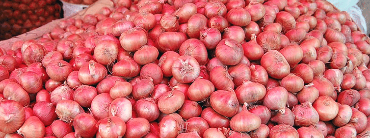 Onion price going through the roof