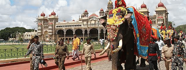 Lead Dasara elephant Arjuna and consorts taken on procession rehearsal successfully