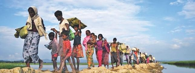 Myanmar's NVC scheme a campaign to erase Rohingya's identity: Report