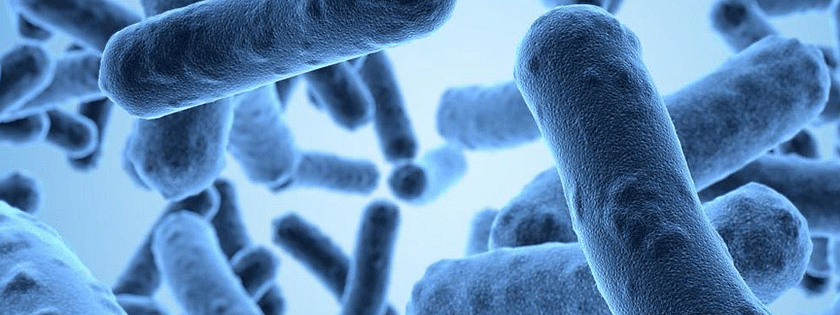 Resistance to antibiotics a rising concern