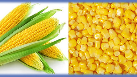 Three Corn Salads