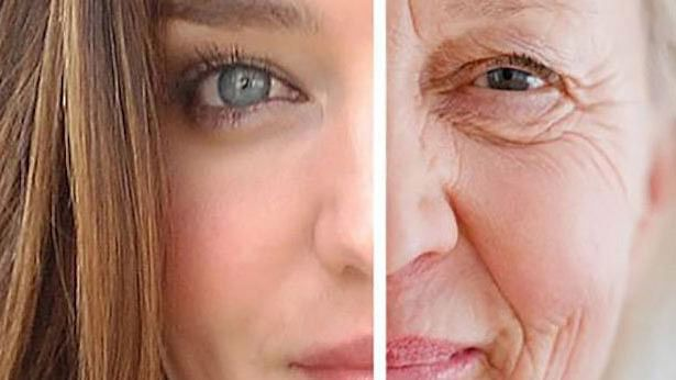 Scientists discover herbal formulation to slow down aging
