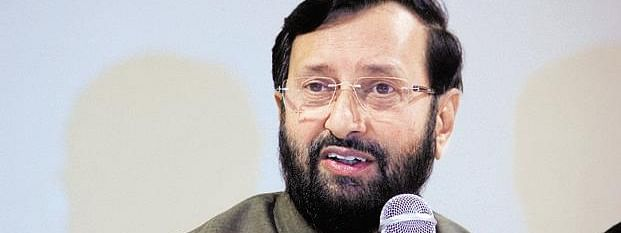 Modi govt taking steps to strengthen economy: Javadekar