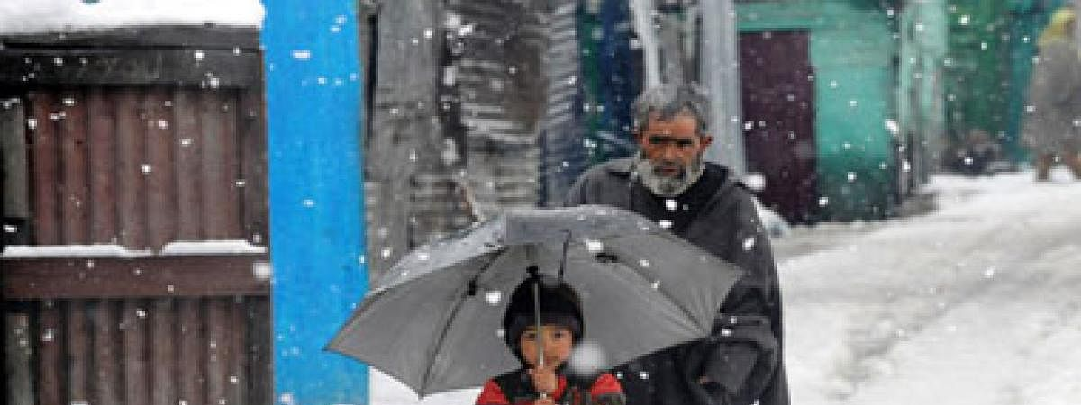 Mainly dry weather in Himachal, cold wave continues