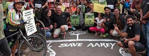 Bombay HC dismisses Petitions against felling of trees of Aarey