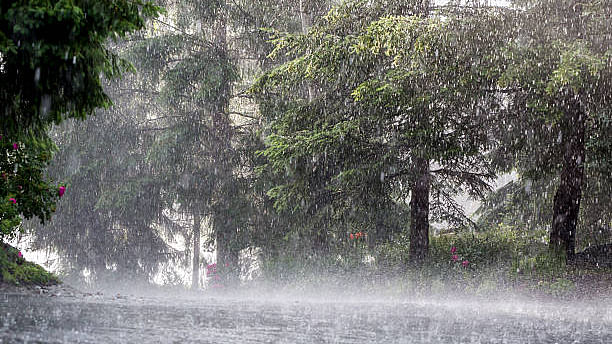 Official machinery gears up in view of continuous rain in Pondy