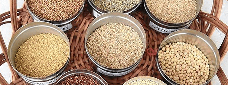 Certifying agency for Organic Foodgrains