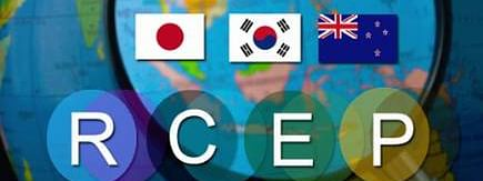 RCEP hits roadblock? : 'Trade agreements are always challenging'
