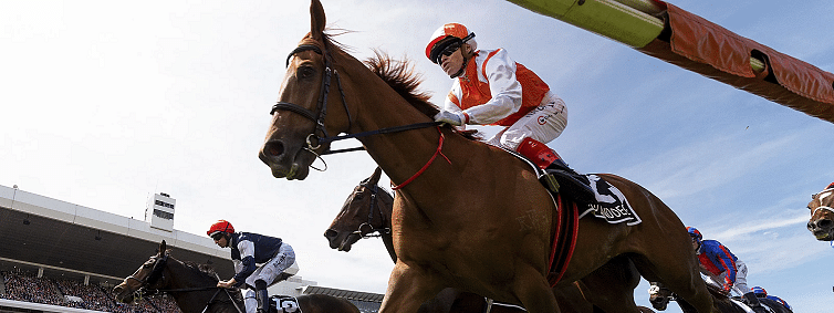 Vow and Declare wins Australia's Melbourne Cup horse race